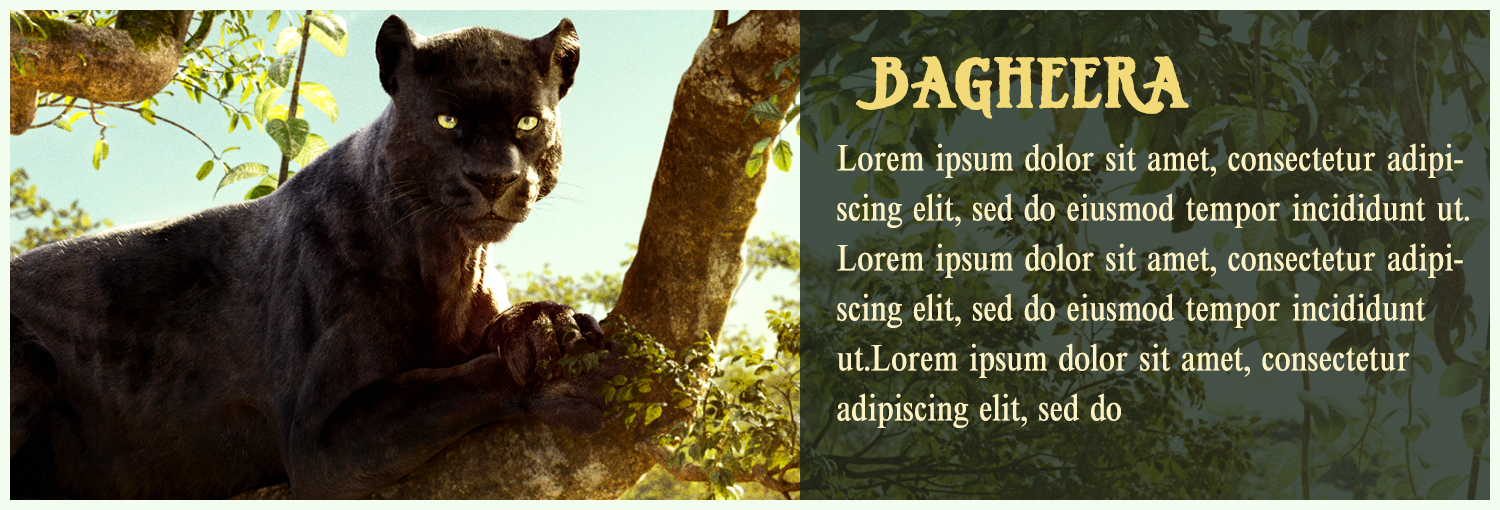 jungle-book_2_characters_bagheera